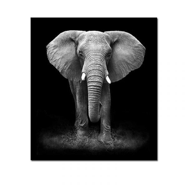 Tableau éléphant noir et blanc fond blanc