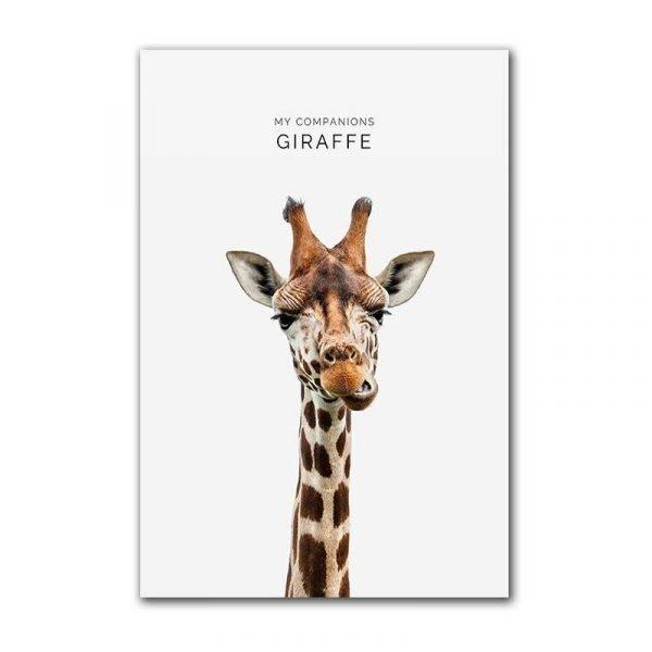 Toile affiche girafe