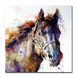 Toile cheval aquarelle