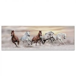 Toile chevaux sauvages