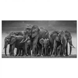 Toile troupeau éléphants