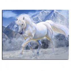 Peinture sur toile cheval blanc