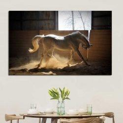 Tableau cheval blanc