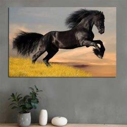 Tableau déco cheval noir