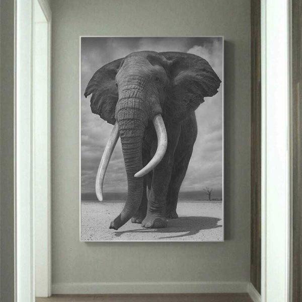 Tableau déco éléphant d'Afrique
