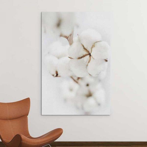 Tableau fleur de coton