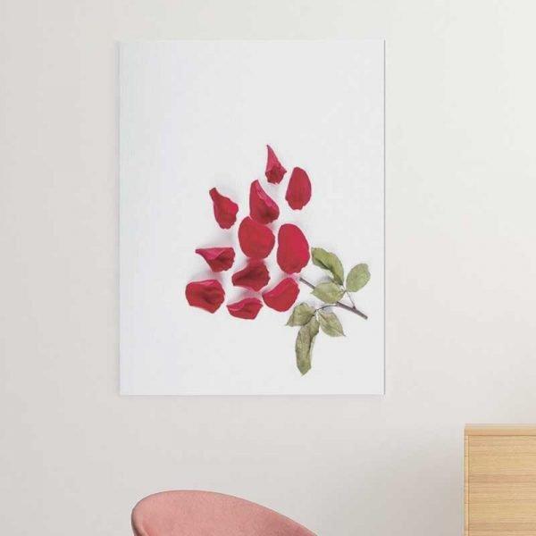 Tableau pétales de fleur