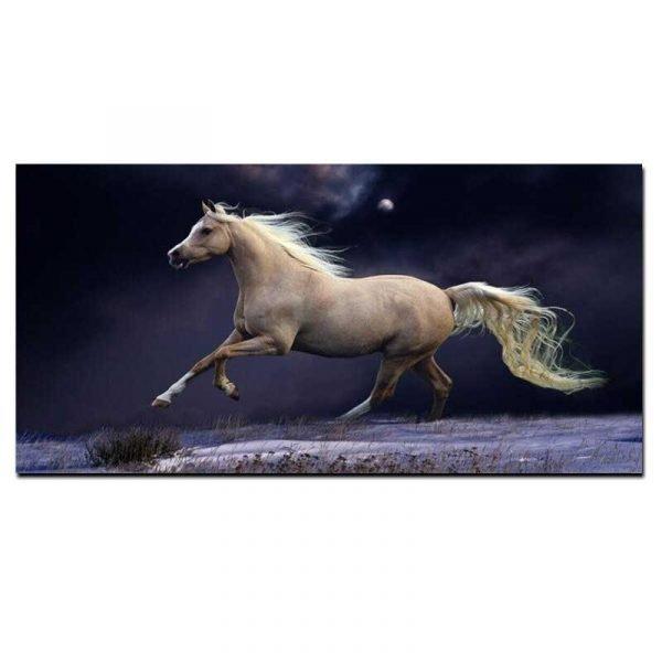 Tableau sur toile cheval au galop