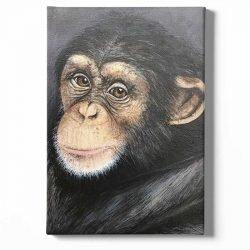 Tableau sur toile portrait singe