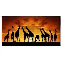 Tableau sur toile girafe Afrique