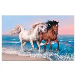 Toile cheval plage