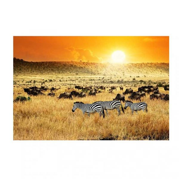 Toile paysage africain