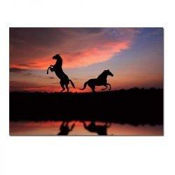 Tableau sur toile silhouette cheval