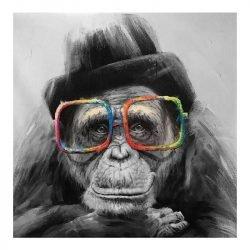 Toile singe à lunettes