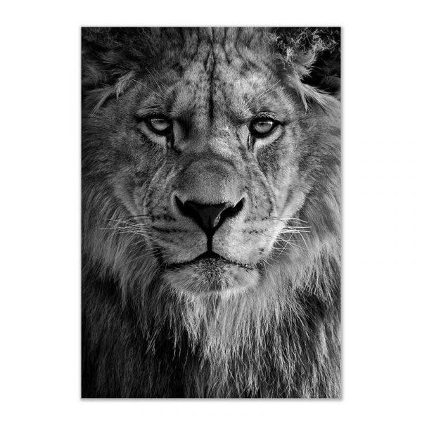 Toile tête de lion noir et blanc