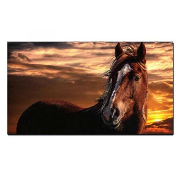 Tableau sur toile cheval marron