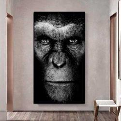 Tableau césar singe