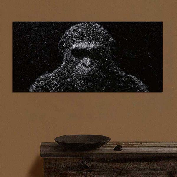 Tableau déco planètes des singes