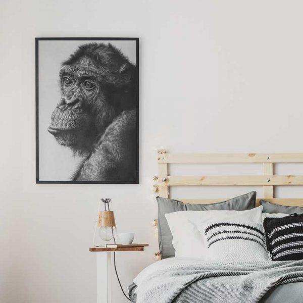 Tableau déco singe noir et blanc