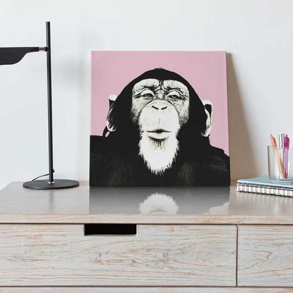Tableau déco singe rose