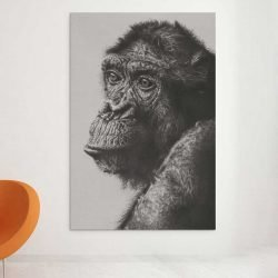Tableau singe noir et blanc