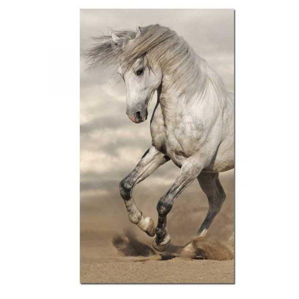 Tableau sur toile cheval crinière au vent