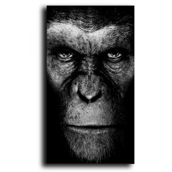 Tableau sur toile césar singe