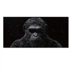 Tableau sur toile planète des singes