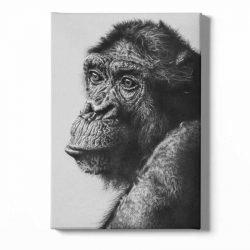 Toile singe noir et blanc