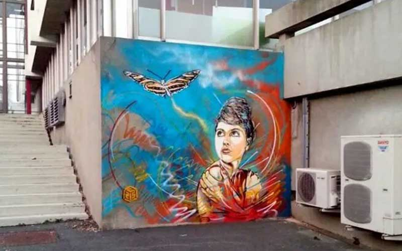 C215 Street art multicolore