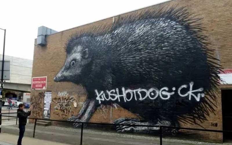 Roa hérisson street art