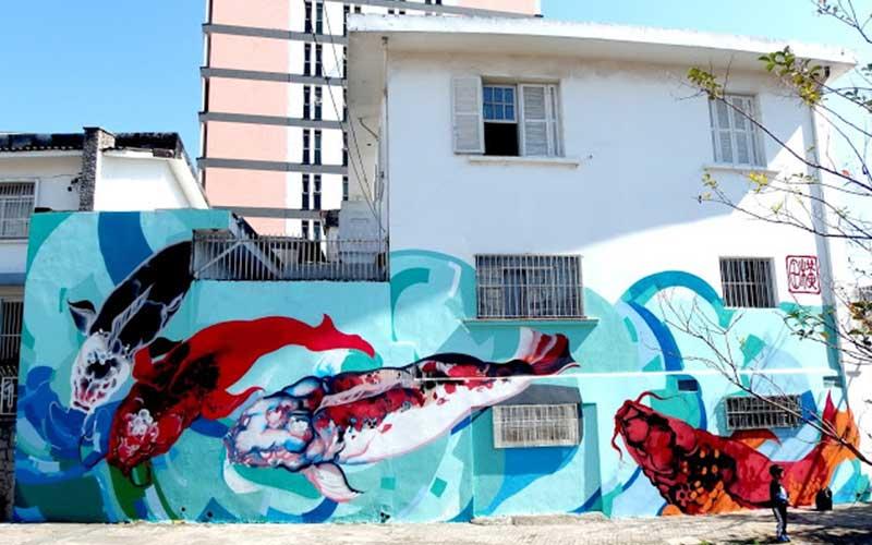titi freak carpe street art